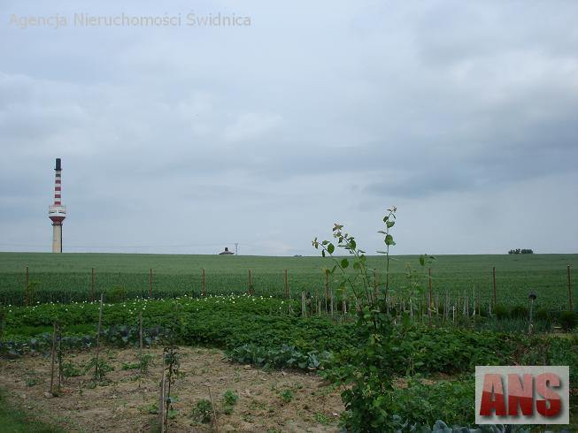 Działka gruntu 17.1499 ha w Jagodniku koło Świdnicy